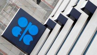 OPEC ölkələri mayda