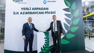 """""""Carlsberg Azerbaijan"""" yerli arpadan hazırlanan """"Xırdalan"""" pivəsinin istehsalına başlayıb"""